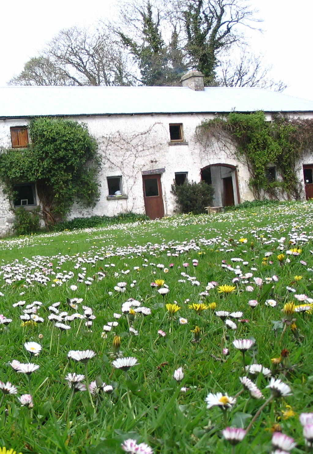 Spring Retreat in Cavan